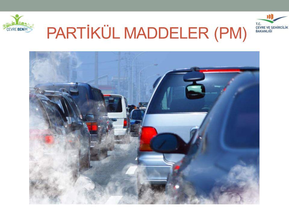 PARTİKÜL MADDELER (PM)