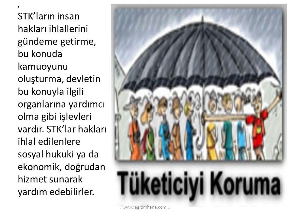 . STK'ların insan hakları ihlallerini gündeme getirme, bu konuda kamuoyunu oluşturma, devletin bu konuyla ilgili organlarına yardımcı olma gibi işlevl