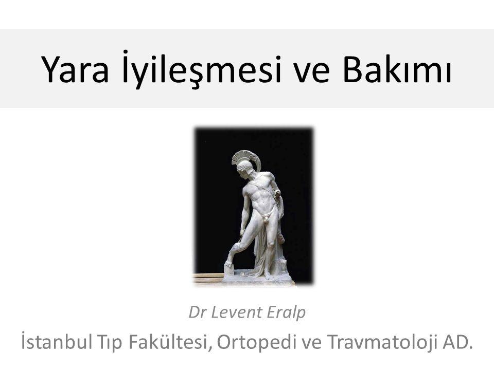 Yara İyileşmesi ve Bakımı Dr Levent Eralp İstanbul Tıp Fakültesi, Ortopedi ve Travmatoloji AD.