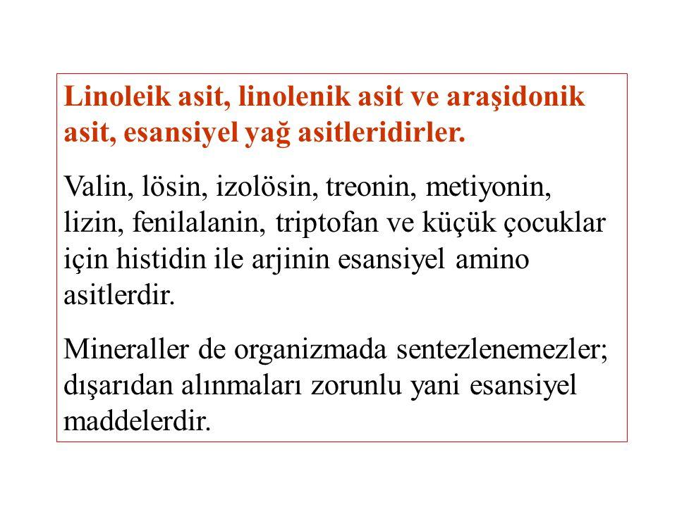 Linoleik asit, linolenik asit ve araşidonik asit, esansiyel yağ asitleridirler. Valin, lösin, izolösin, treonin, metiyonin, lizin, fenilalanin, tripto