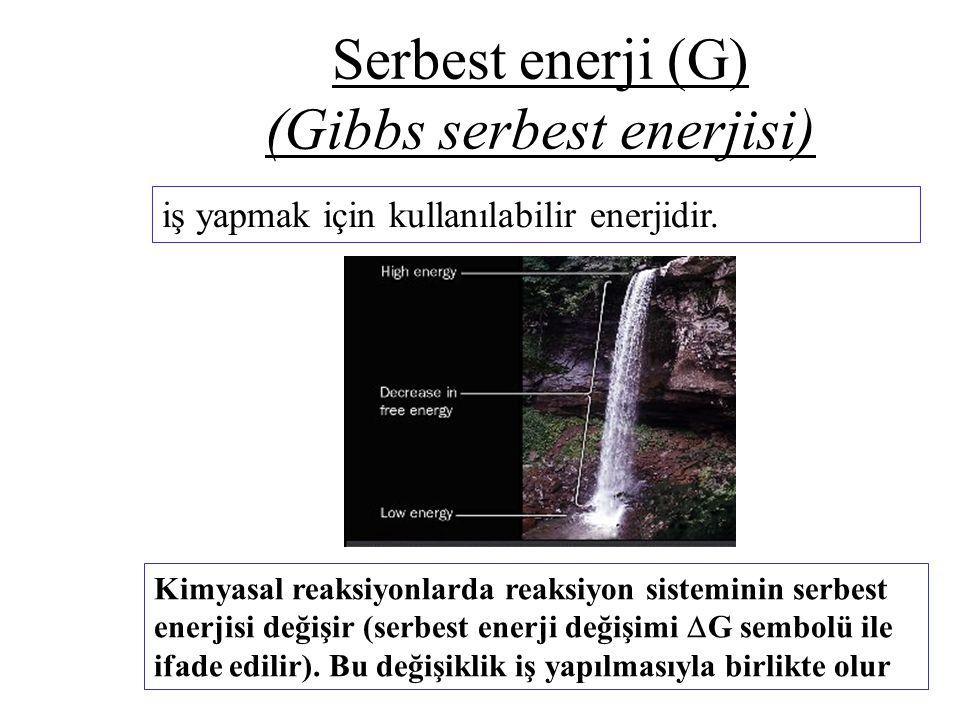 Serbest enerji (G) (Gibbs serbest enerjisi) iş yapmak için kullanılabilir enerjidir. Kimyasal reaksiyonlarda reaksiyon sisteminin serbest enerjisi değ