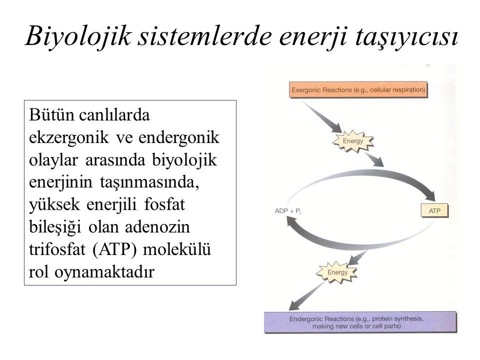 Biyolojik sistemlerde enerji taşıyıcısı Bütün canlılarda ekzergonik ve endergonik olaylar arasında biyolojik enerjinin taşınmasında, yüksek enerjili f