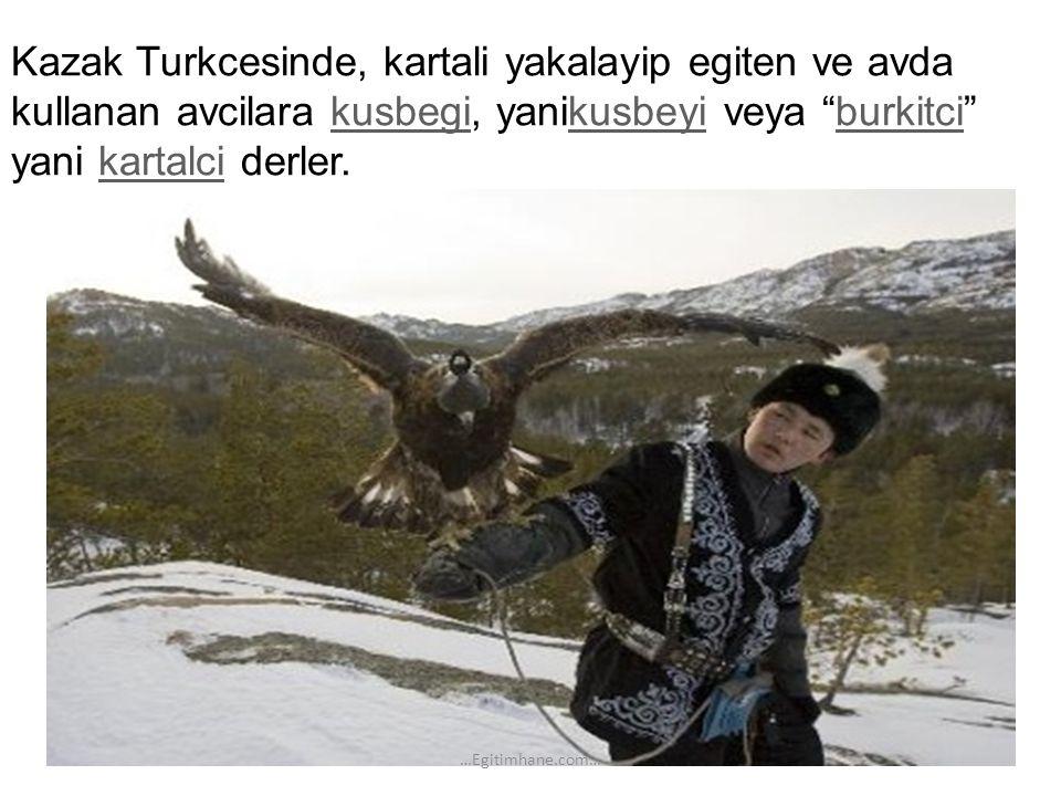 "Kazak Turkcesinde, kartali yakalayip egiten ve avda kullanan avcilara kusbegi, yanikusbeyi veya ""burkitci"" yani kartalci derler. kusbegikusbeyiburkitc"