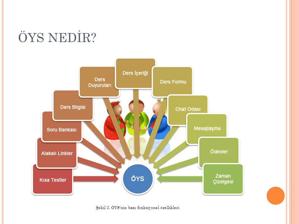 ENTERPRISE İYS'LER Enterprise İYS'ler temel olarak birçok İYS türünün barındırmış olduğu özelliklerin bir çoğuna sahiptirler.