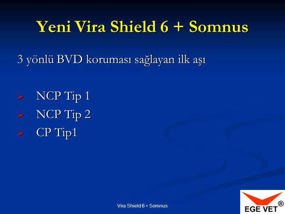 Vira Shield 6 + Somnus Yeni Vira Shield 6 + Somnus 3 yönlü BVD koruması sağlayan ilk aşı  NCP Tip 1  NCP Tip 2  CP Tip1