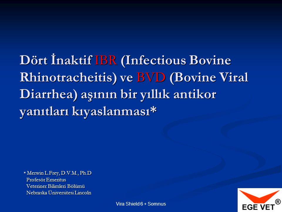 Vira Shield 6 + Somnus Dört İnaktif IBR (Infectious Bovine Rhinotracheitis) ve BVD (Bovine Viral Diarrhea) aşının bir yıllık antikor yanıtları kıyaslanması* * Merwin L.Frey, D.V.M., Ph.D Profesör Emeritus Veteriner Bilimleri Bölümü Nebraska Üniversitesi Lincoln
