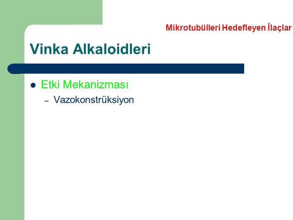 Vinka Alkaloidleri Etki Mekanizması – Vazokonstrüksiyon Mikrotubülleri Hedefleyen İlaçlar