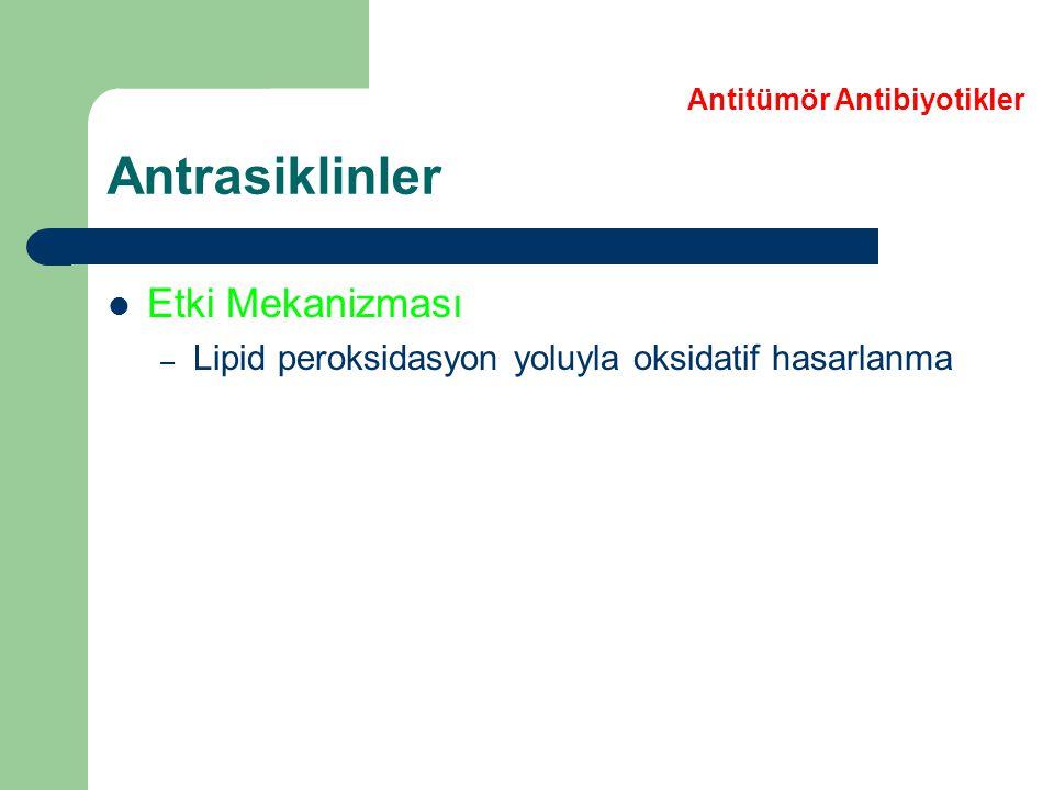 Daunorubisin Doksorubisin Epirubisin İdarubisin Kardiyomyopati Myoperikardit Supraventriküler taşikardi Ventriküler ektopi Antrasiklinler Antitümör Antibiyotikler