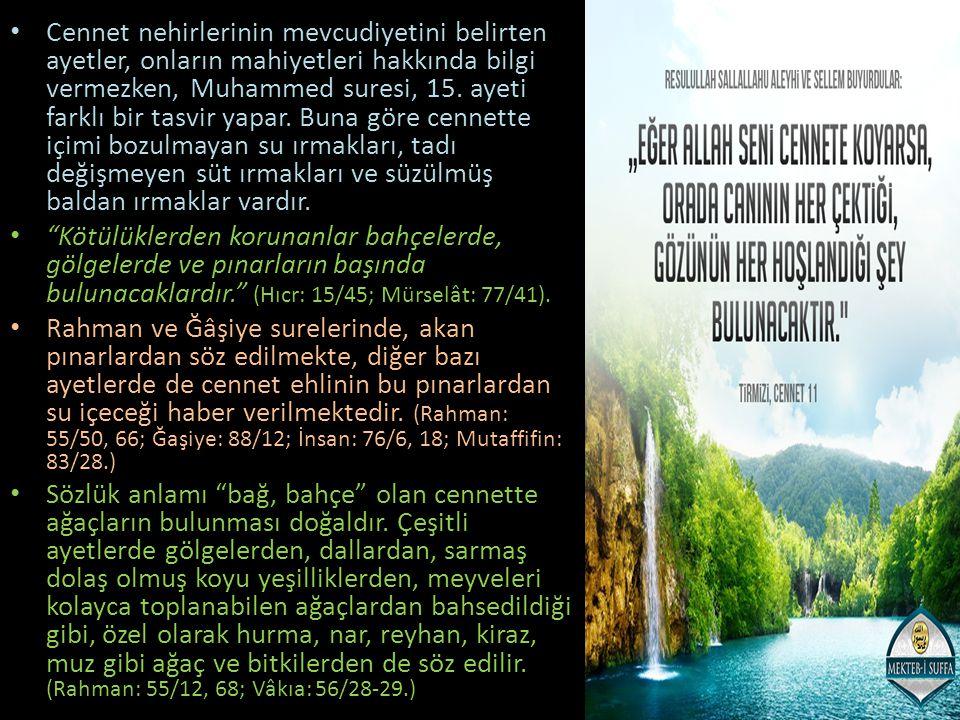 Cennet nehirlerinin mevcudiyetini belirten ayetler, onların mahiyetleri hakkında bilgi vermezken, Muhammed suresi, 15. ayeti farklı bir tasvir yapar.