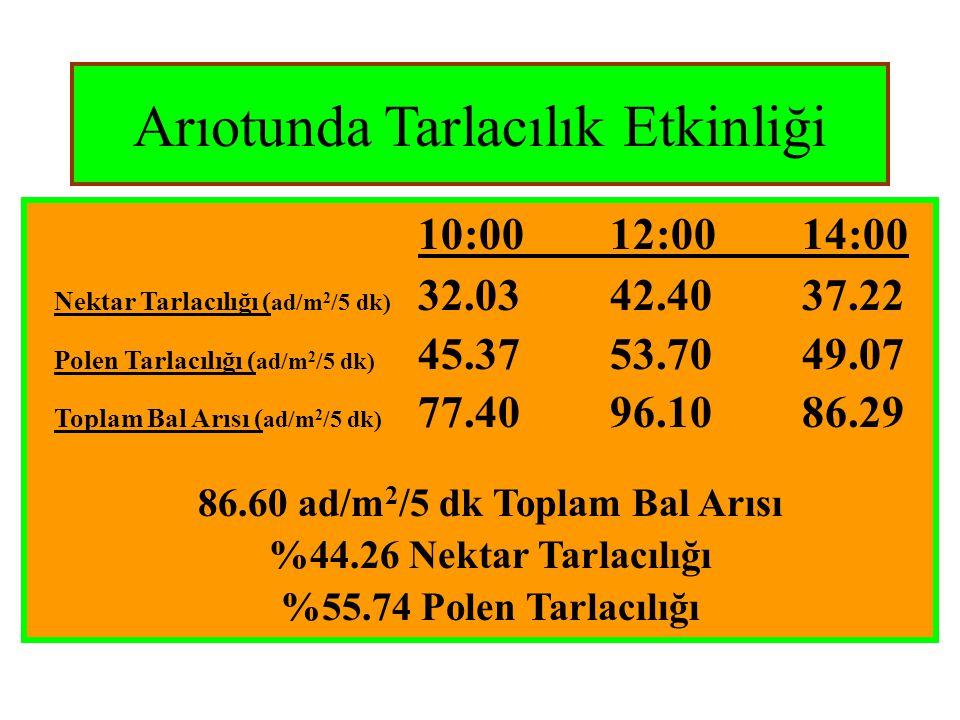 10:0012:0014:00 Nektar Tarlacılığı ( ad/m 2 /5 dk) 32.0342.4037.22 Polen Tarlacılığı ( ad/m 2 /5 dk) 45.3753.7049.07 Toplam Bal Arısı ( ad/m 2 /5 dk) 77.4096.1086.29 86.60 ad/m 2 /5 dk Toplam Bal Arısı %44.26 Nektar Tarlacılığı %55.74 Polen Tarlacılığı Arıotunda Tarlacılık Etkinliği