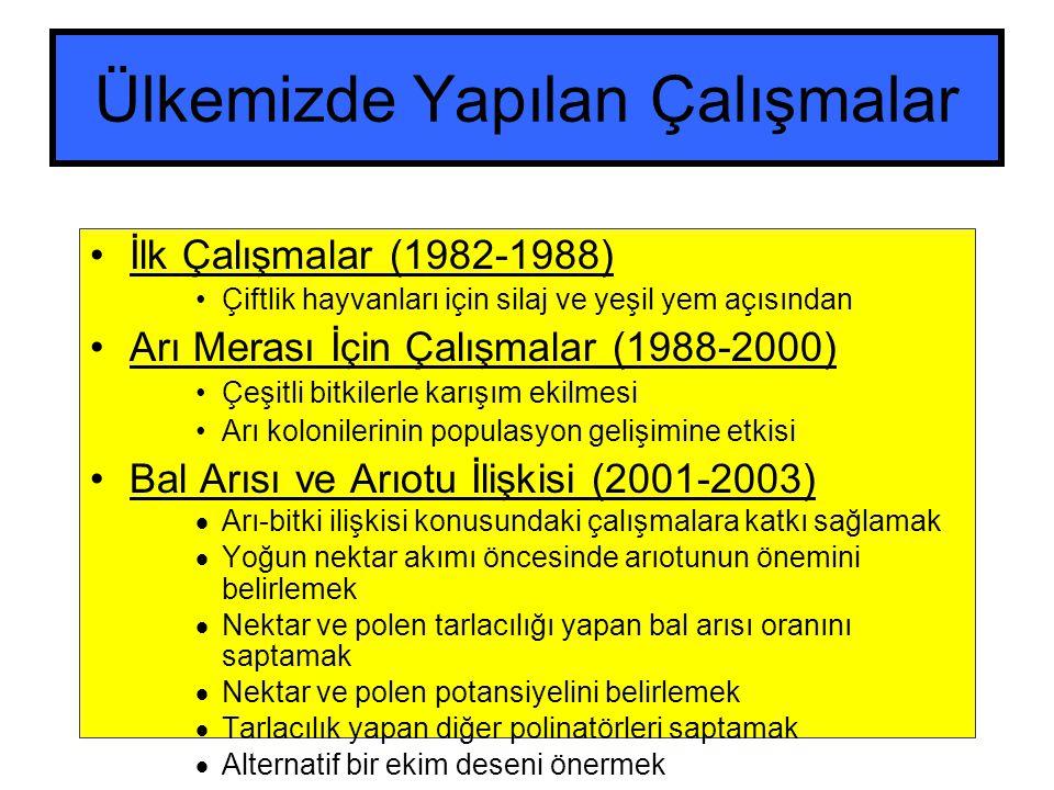 Ülkemizde Yapılan Çalışmalar İlk Çalışmalar (1982-1988) Çiftlik hayvanları için silaj ve yeşil yem açısından Arı Merası İçin Çalışmalar (1988-2000) Çeşitli bitkilerle karışım ekilmesi Arı kolonilerinin populasyon gelişimine etkisi Bal Arısı ve Arıotu İlişkisi (2001-2003)  Arı-bitki ilişkisi konusundaki çalışmalara katkı sağlamak  Yoğun nektar akımı öncesinde arıotunun önemini belirlemek  Nektar ve polen tarlacılığı yapan bal arısı oranını saptamak  Nektar ve polen potansiyelini belirlemek  Tarlacılık yapan diğer polinatörleri saptamak  Alternatif bir ekim deseni önermek