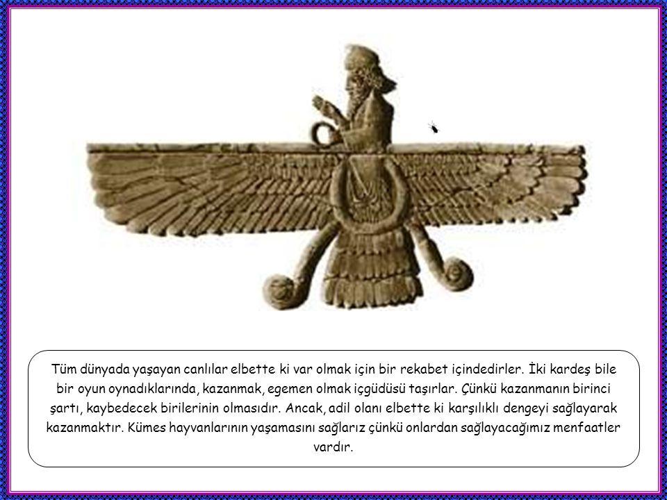 Melek Tavus bütün bu işlerin denetleyicisi ve Tanrının bu dünyadaki gölgesidir.