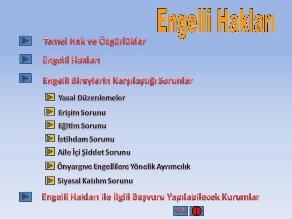 Bu proje Avrupa Birliği ve Türkiye Cumhuriyeti tarafından finanse edilmektedir. Özürlü STK larının Lobicilik ve Hak Temelli Yaklaşımlar Konusundaki Kapasitesinin Güçlendirilmesi TR2009/0135.01-04/408 Engellilerin Toplumsal Entegrasyonunun Geliştirilmesi Projesi