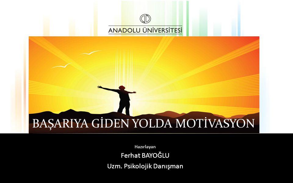 ÇARESİZLİĞİ ÖĞRENMİŞİZDİR ASLINDA.. Başarıya Giden Yolda Motivasyon