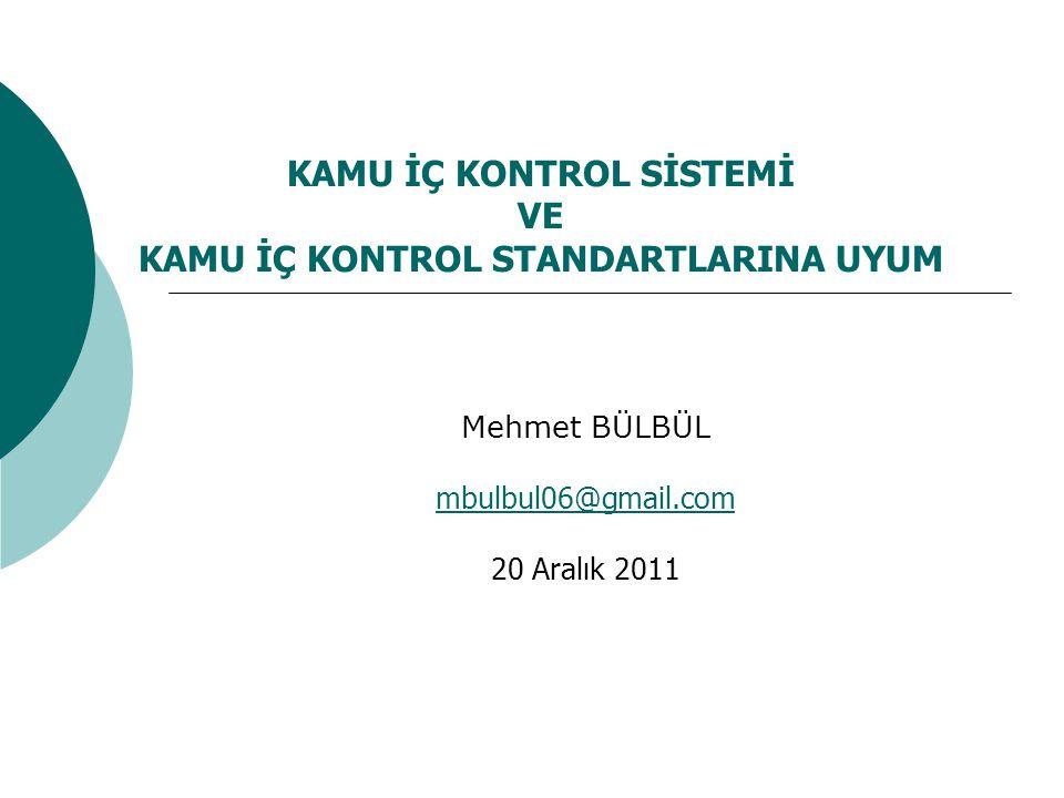 Kamu İç Kontrol Standartları III.