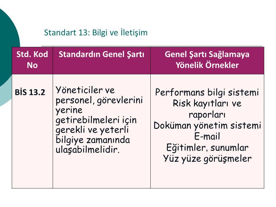 Standart 13: Bilgi ve İletişim Std.