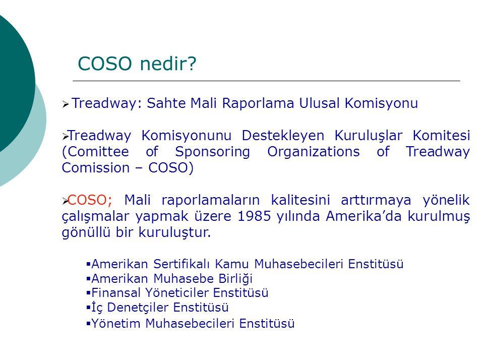  Treadway: Sahte Mali Raporlama Ulusal Komisyonu  Treadway Komisyonunu Destekleyen Kuruluşlar Komitesi (Comittee of Sponsoring Organizations of Treadway Comission – COSO)  COSO; Mali raporlamaların kalitesini arttırmaya yönelik çalışmalar yapmak üzere 1985 yılında Amerika'da kurulmuş gönüllü bir kuruluştur.