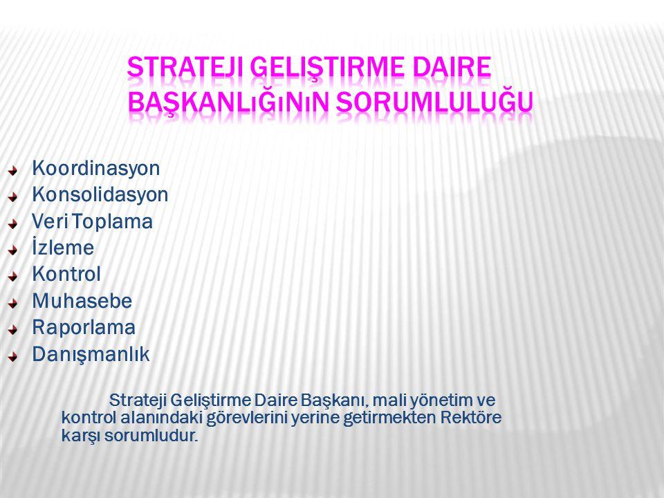 Koordinasyon Konsolidasyon Veri Toplama İzleme Kontrol Muhasebe Raporlama Danışmanlık Strateji Geliştirme Daire Başkanı, mali yönetim ve kontrol alanı