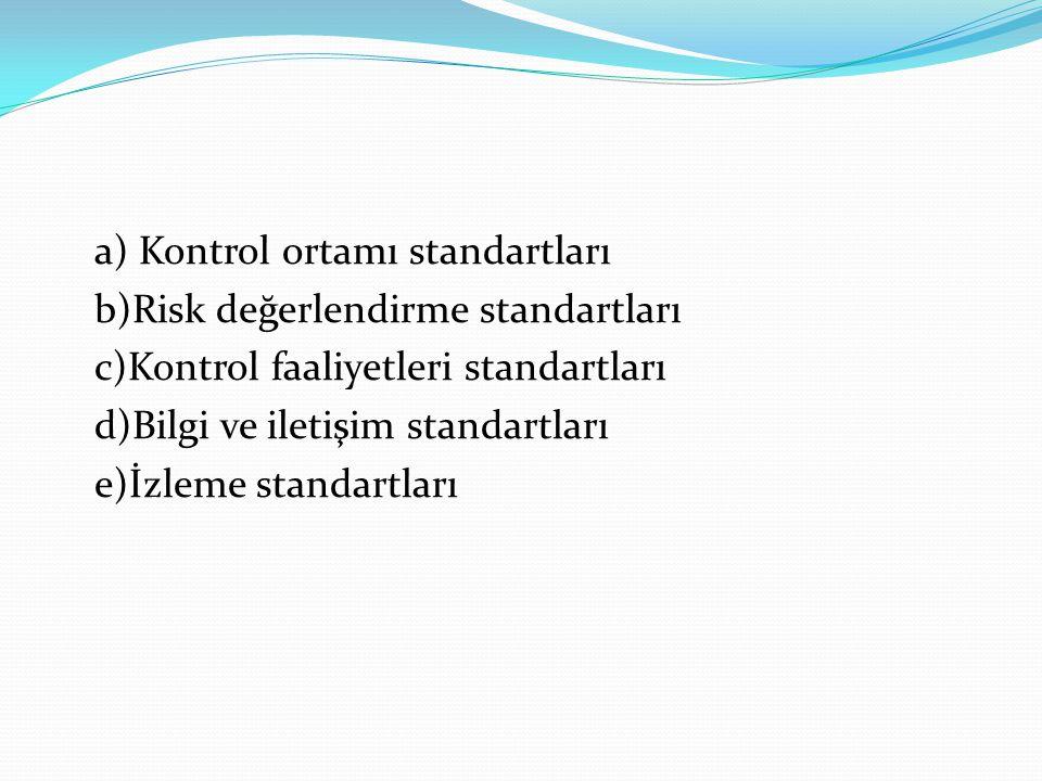 a) Kontrol ortamı standartları b)Risk değerlendirme standartları c)Kontrol faaliyetleri standartları d)Bilgi ve iletişim standartları e)İzleme standar