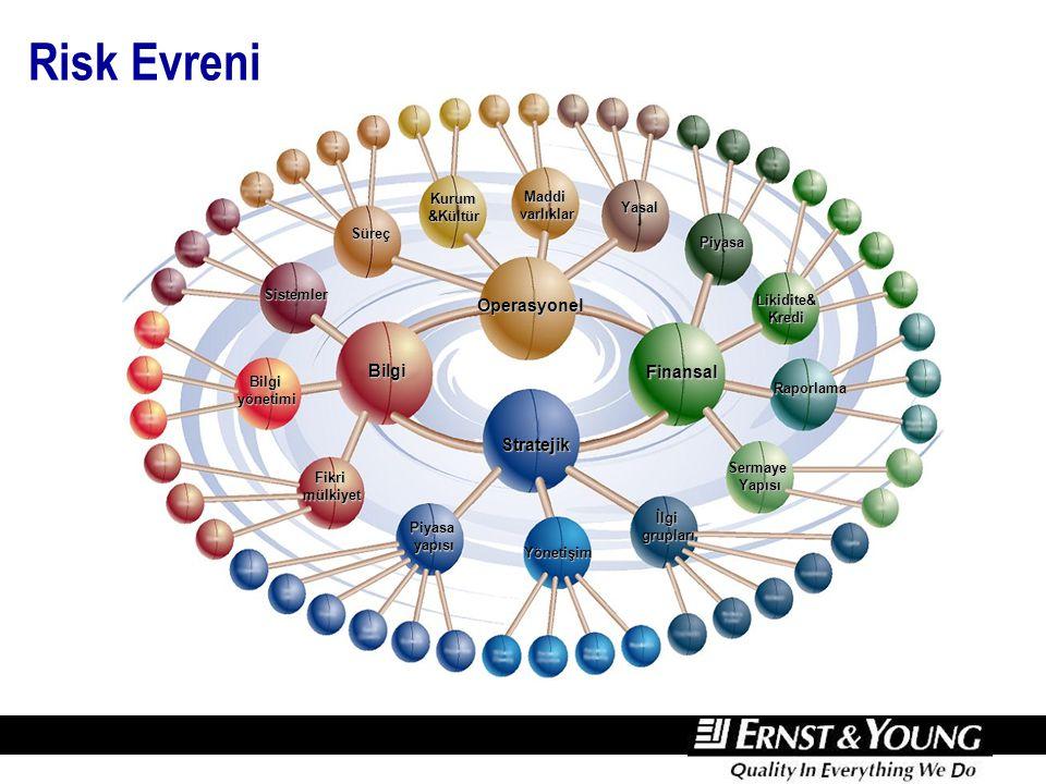 Risk Evreni Bilgi Operasyonel Finansal Stratejik Piyasayapısı Yönetişim İlgigrupları Bilgiyönetimi Sistemler Fikrimülkiyet Yasal Süreç Maddivarlıklar