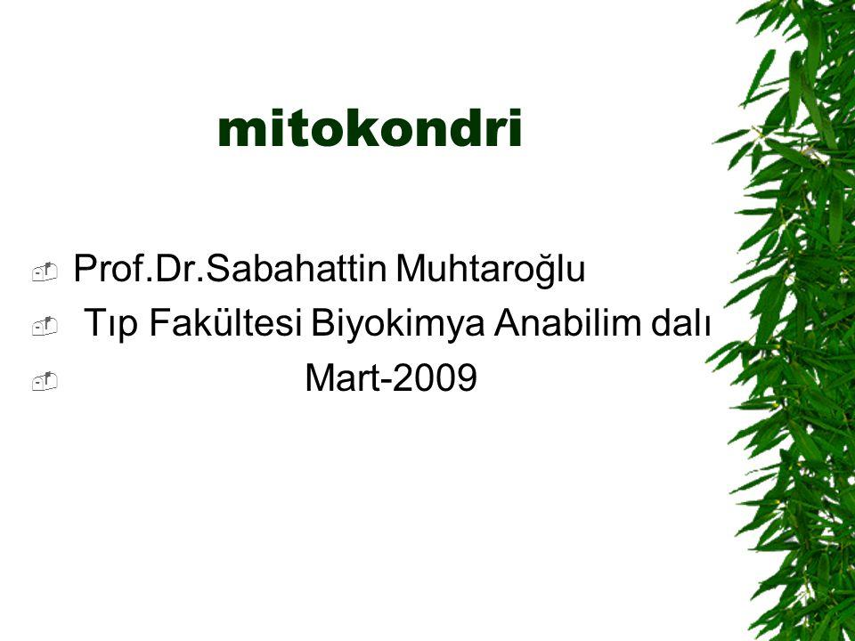 mitokondri  Prof.Dr.Sabahattin Muhtaroğlu  Tıp Fakültesi Biyokimya Anabilim dalı  Mart-2009