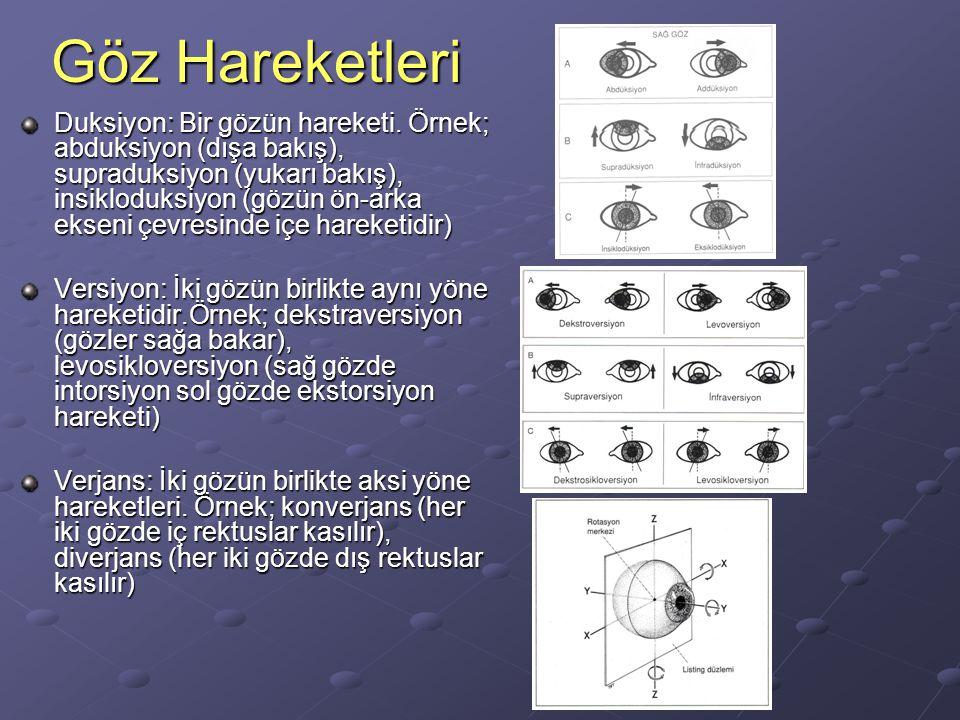 Göz hareketlerinde kurallar Sinerjistik kaslar: Aynı tarafta aynı hareketi yaptıran kaslar.