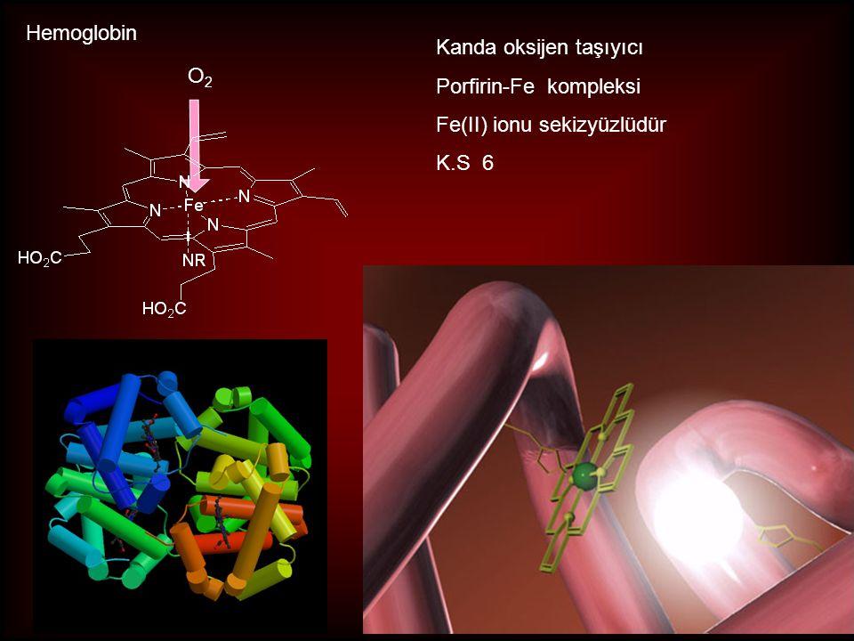 Kanda oksijen taşıyıcı Porfirin-Fe kompleksi Fe(II) ionu sekizyüzlüdür K.S 6 O2O2 Hemoglobin