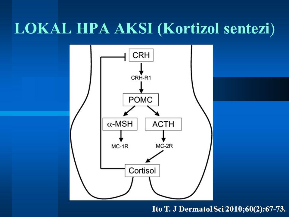 LOKAL HPA AKSI (Kortizol sentezi) Ito T. J Dermatol Sci 2010;60(2):67-73.