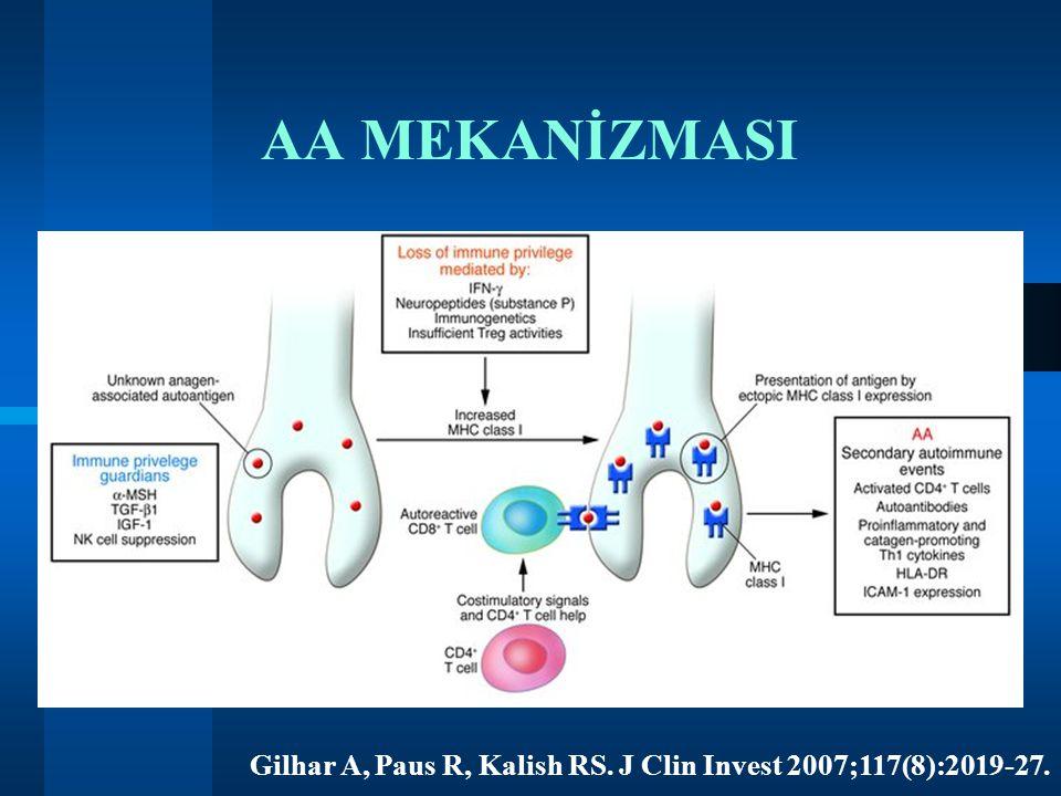 AA MEKANİZMASI Gilhar A, Paus R, Kalish RS. J Clin Invest 2007;117(8):2019-27.