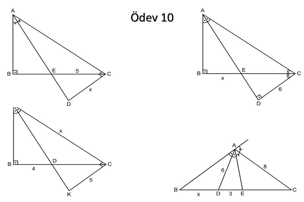 Ödev 10 x