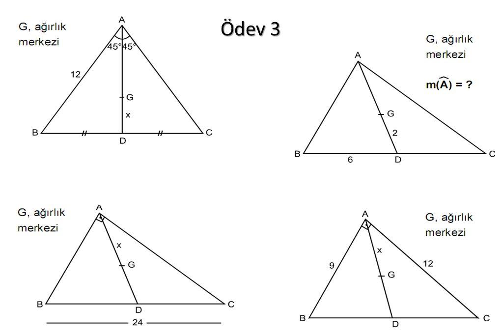 Ödev 3