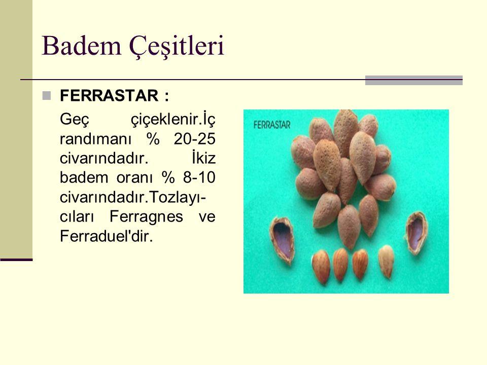 Badem Çeşitleri YALTINSKİ : Geç çiçeklenir.İç meyve ağırlığı 1.4 gramdır.