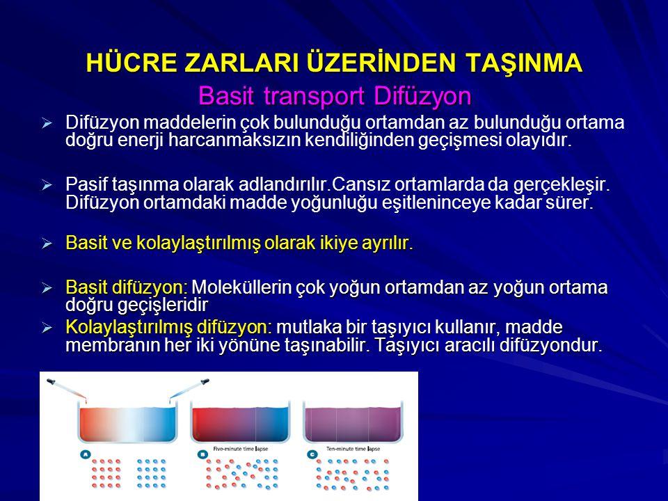 HÜCRE ZARLARI ÜZERİNDEN TAŞINMA Basit transport Difüzyon Basit transport Difüzyon   Difüzyon maddelerin çok bulunduğu ortamdan az bulunduğu ortama d