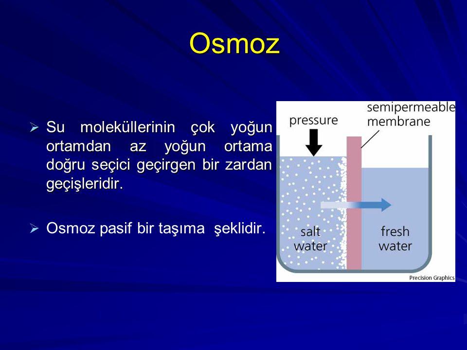 Osmoz  Su moleküllerinin çok yoğun ortamdan az yoğun ortama doğru seçici geçirgen bir zardan geçişleridir.   Osmoz pasif bir taşıma şeklidir.
