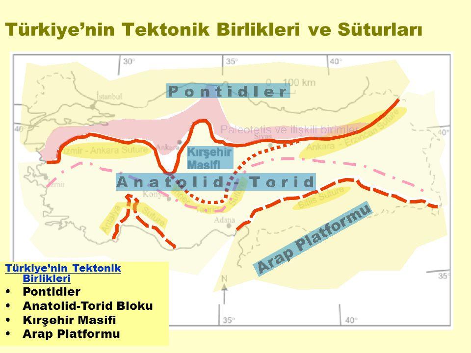 Türkiye'nin Tektonik Birlikleri ve Süturları Türkiye'nin Tektonik Birlikleri Pontidler Anatolid-Torid Bloku Kırşehir Masifi Arap Platformu