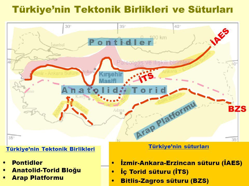 Türkiye'nin Tektonik Birlikleri ve Süturları Türkiye'nin Tektonik Birlikleri Pontidler Anatolid-Torid Bloğu Arap Platformu Türkiye'nin süturları İzmir