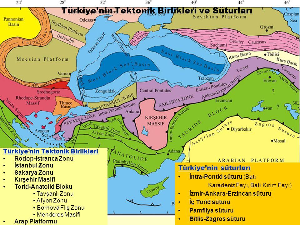 Türkiye'nin süturları İntra-Pontid süturu (Batı Karadeniz Fayı, Batı Kırım Fayı) İzmir-Ankara-Erzincan süturu İç Torid süturu Pamfilya süturu Bitlis-Z