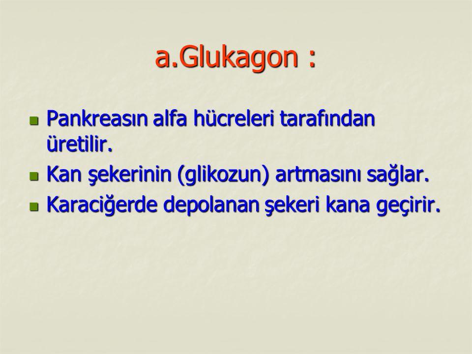 a.Glukagon : Pankreasın alfa hücreleri tarafından üretilir. Pankreasın alfa hücreleri tarafından üretilir. Kan şekerinin (glikozun) artmasını sağlar.