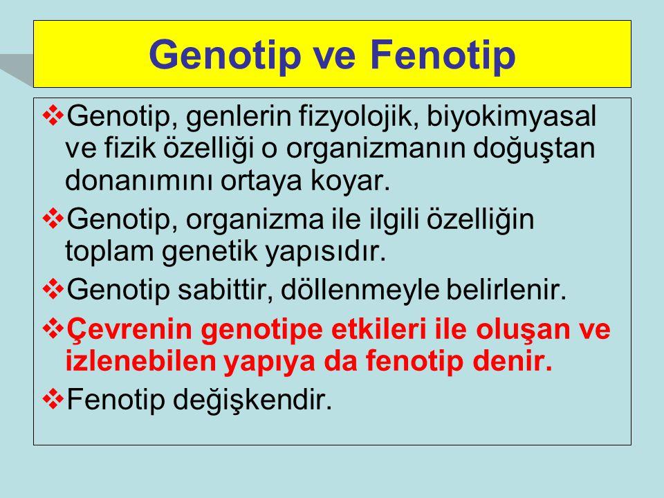 Genotip ve Fenotip  Genotip, genlerin fizyolojik, biyokimyasal ve fizik özelliği o organizmanın doğuştan donanımını ortaya koyar.  Genotip, organizm