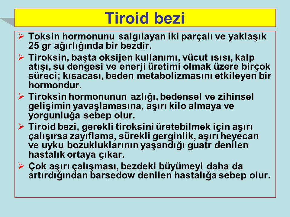 Tiroid bezi  Toksin hormonunu salgılayan iki parçalı ve yaklaşık 25 gr ağırlığında bir bezdir.  Tiroksin, başta oksijen kullanımı, vücut ısısı, kalp