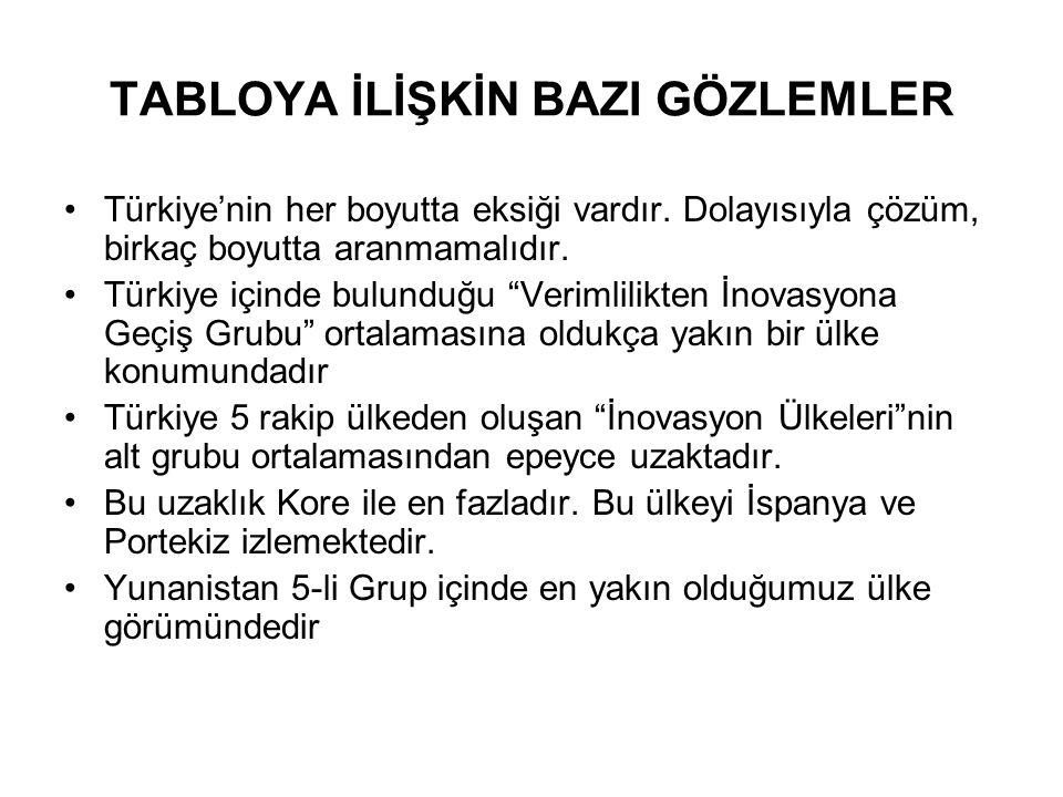 """TABLOYA İLİŞKİN BAZI GÖZLEMLER Türkiye'nin her boyutta eksiği vardır. Dolayısıyla çözüm, birkaç boyutta aranmamalıdır. Türkiye içinde bulunduğu """"Verim"""