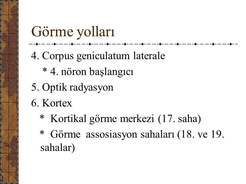 Görme yolları 4.Corpus geniculatum laterale * 4. nöron başlangıcı 5.