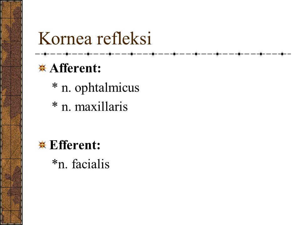 Kornea refleksi Afferent: * n. ophtalmicus * n. maxillaris Efferent: *n. facialis