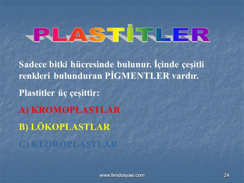 www.fendosyasi.com24 Sadece bitki hücresinde bulunur. İçinde çeşitli renkleri bulunduran PİGMENTLER vardır. Plastitler üç çeşittir: A) KROMOPLASTLAR B
