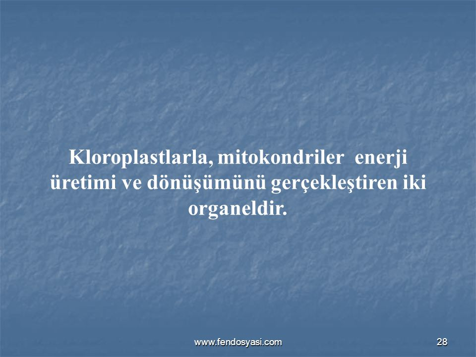 www.fendosyasi.com28 Kloroplastlarla, mitokondriler enerji üretimi ve dönüşümünü gerçekleştiren iki organeldir.