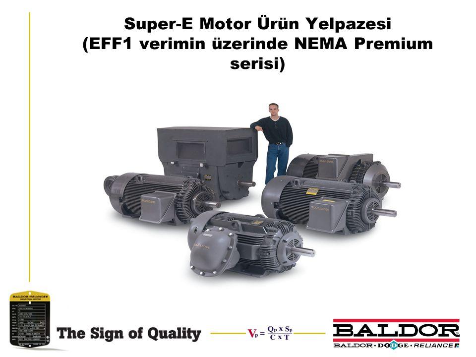 Super-E Motor Ürün Yelpazesi (EFF1 verimin üzerinde NEMA Premium serisi)