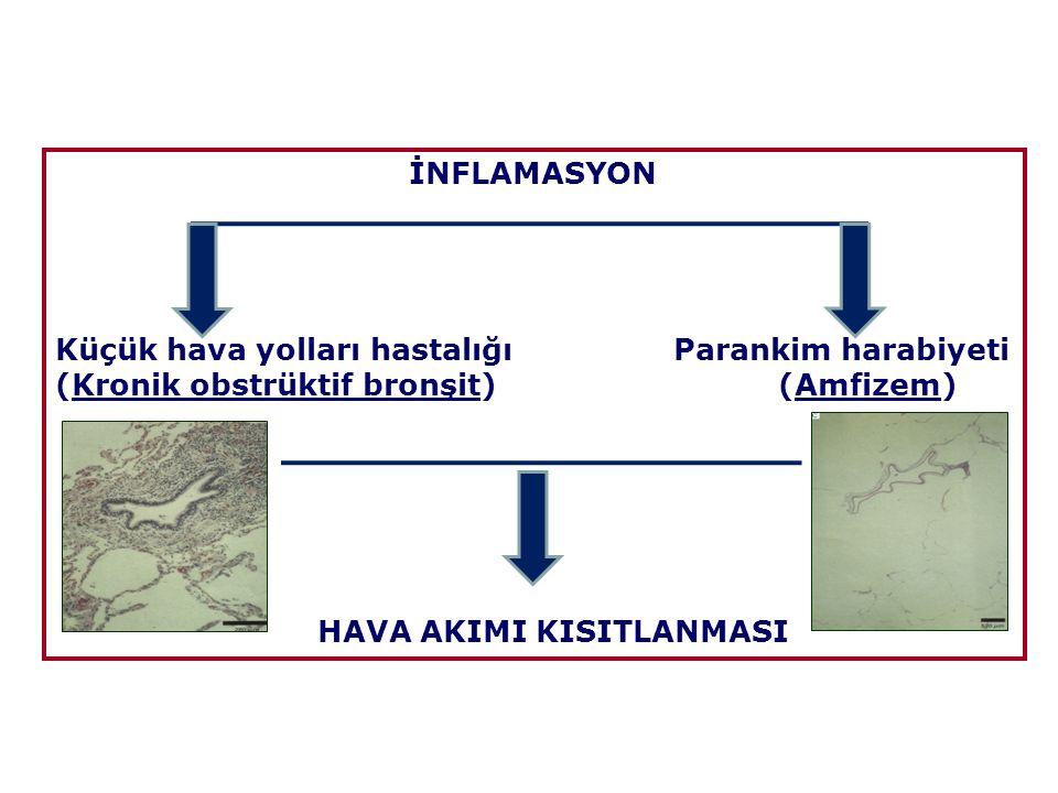 İnhale edilen Zararlı etkenler İnflamasyon Akciğerde zedelenme Hava yolu daralması ve peribronşiyal fibrozis (Küçük hava yolu hastalığı) Parankim yıkımı (Amfizem) Mukus hipersekresyonu (Kronik bronşit) Koruyucu mekanizmalar Tamir mekanizmaları