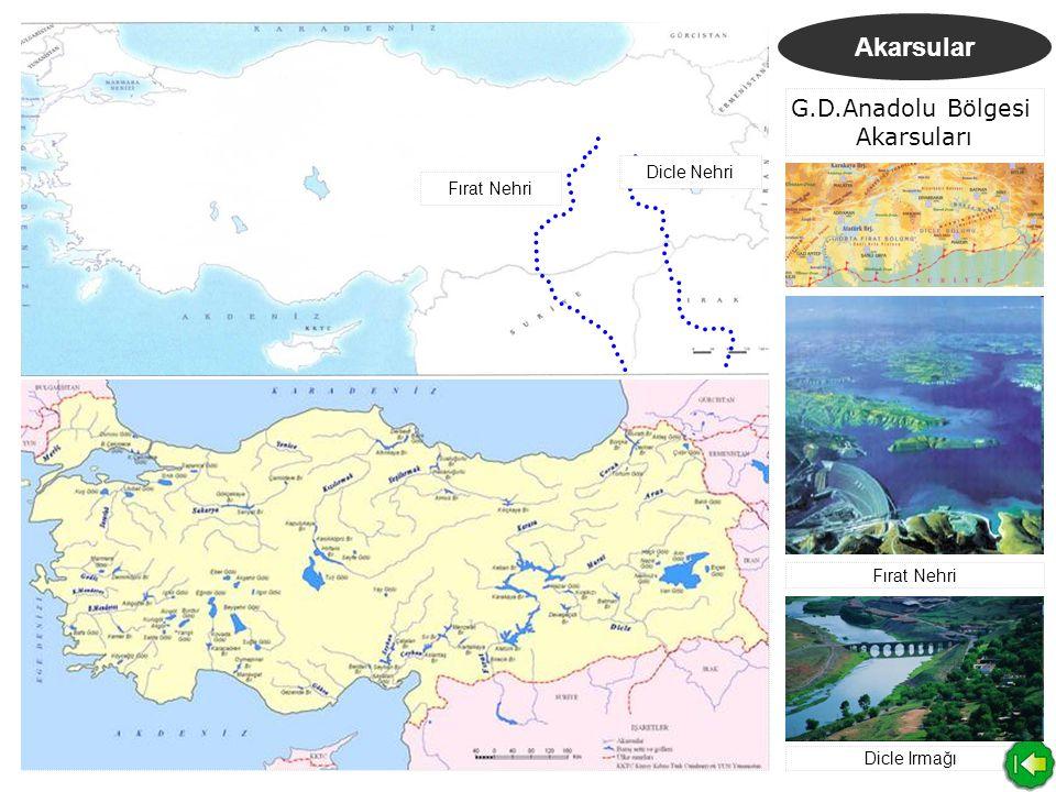 Akarsular G.D.Anadolu Bölgesi Akarsuları Fırat Nehri Dicle Nehri Fırat Nehri Dicle Irmağı