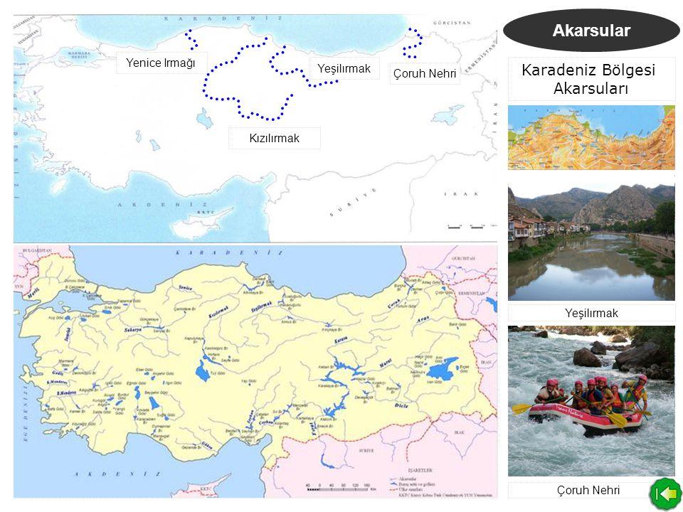 Akarsular D.Anadolu Bölgesi Akarsuları Kura-Aras Nehri Fırat Nehri Dicle Nehri Aras Nehri Kura Nehri