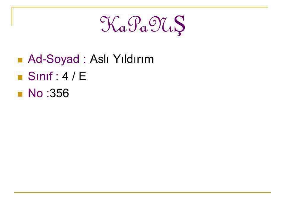 KaPaNı Ş Ad-Soyad : Aslı Yıldırım Sınıf : 4 / E No :356